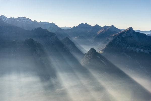 Sunrays in fog