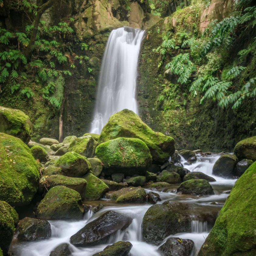 Azorean waterfall