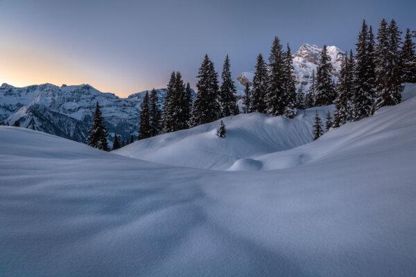 Snowy Layers at Dawn
