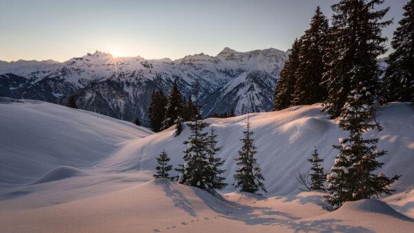 First Light in Winter